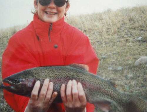 Fish On Friday/Rainbow Trout