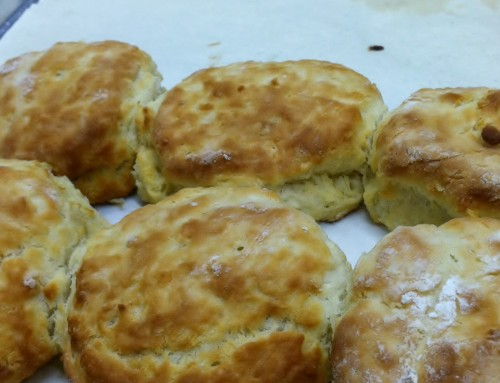 How to Bake the Best Buttermilk Biscuits