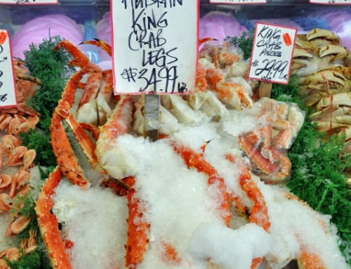 Fresh Fish Prices From Boat to Plate