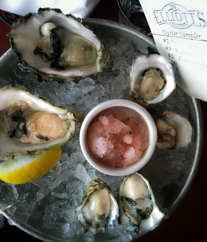 Transcript for O is for Oysters and Ocean Threats